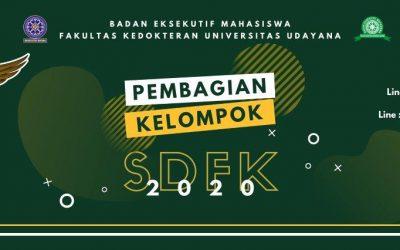 Pembagian Kelompok SDFK 2020